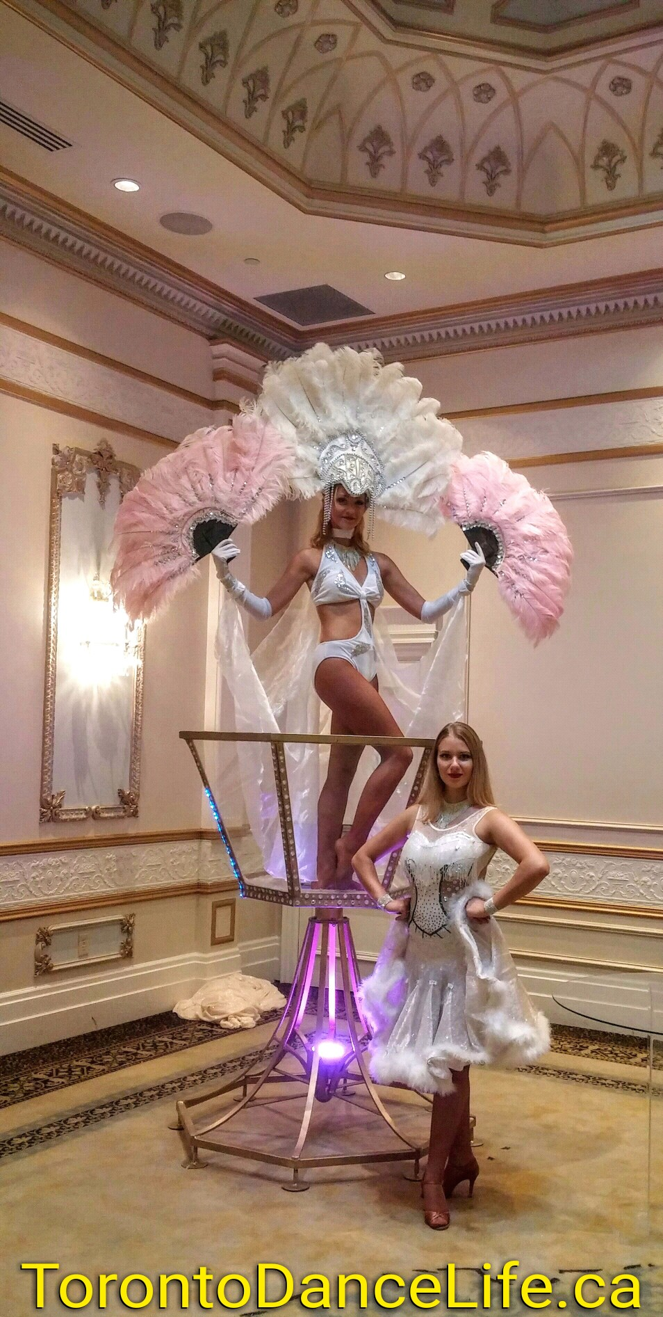 Giant Martini Glass Performer/ Champagne Glass